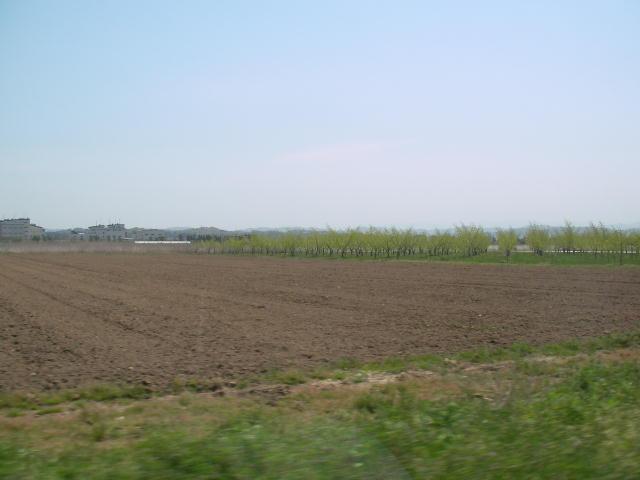 まわりは一面の農地