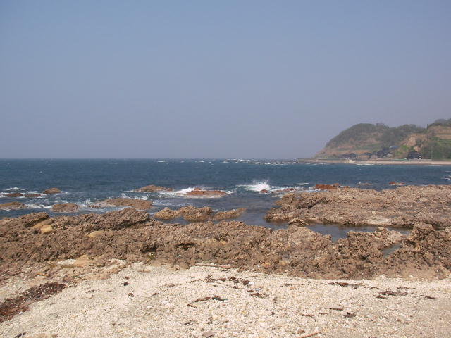 すぐ側が浜