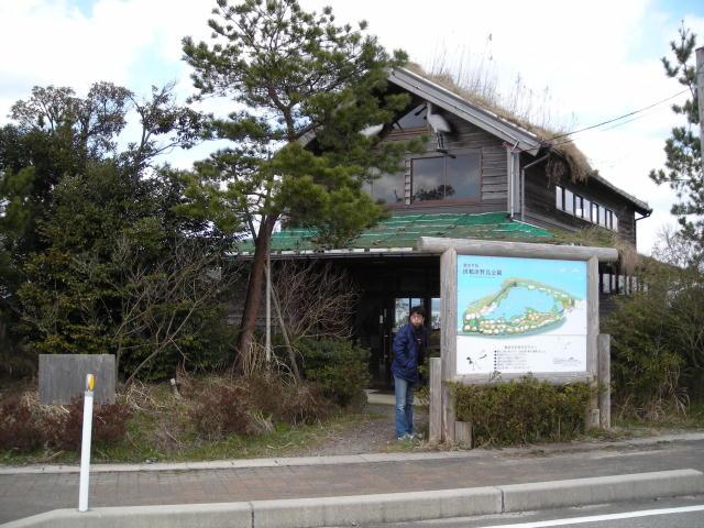 田鶴浜野鳥公園