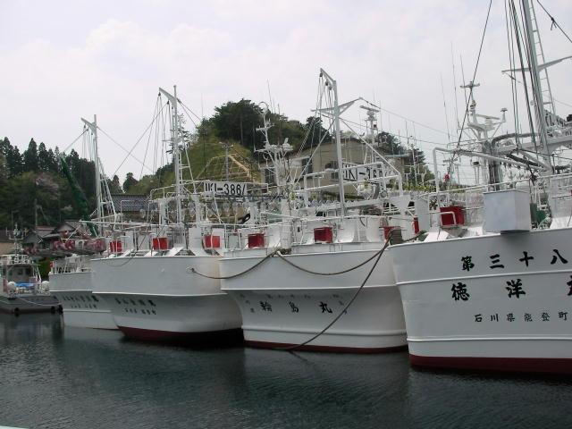 大きな漁船も停泊